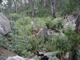 Picture relating to Booroomba Creek - titled 'Booroomba Creek creekbed'