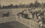 Picture relating to Toowoomba - titled 'Royal Agricultural Show, Toowoomba, ca. 1905'
