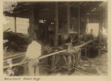 Picture relating to Blackall Range - titled 'Sawmill workers at the Maleny Sawmill in the Blackall Range'