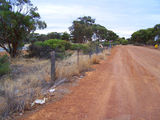 Picture relating to Rabbit Proof Fence Road - titled 'Rabbit Proof Fence Road'
