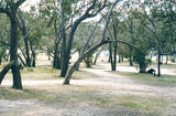 Picture relating to Kara Kara State Park - titled 'Kara Kara State Park: Teddington camp ground'