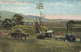 Picture of / about 'Killarney' Queensland - Wheat threshing at Killarney, Queensland