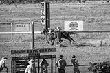 Picture relating to Barcaldine - titled 'Barcaldine Race Day'