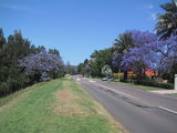 Picture relating to Emu Plains - titled 'Emu Plains NSW 2009'