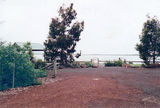 Picture relating to Lake Bookar - titled 'Lake Bookar grasslands revegertation park'