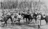 Picture relating to Queensland - titled 'Cattle droving, 1880-1890'