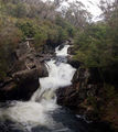 Picture of / about 'Thredbo River' New South Wales - Thredbo River