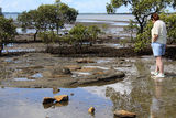 Picture relating to Deception Bay - titled 'Deception Bay'