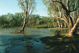 Picture relating to Roper River - titled 'Roper River'