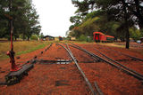 Picture relating to Dwellingup - titled 'Railway yard, Dwellingup WA'