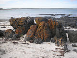 Picture relating to Starvation Boat Harbour - titled 'Coloured Rocks on Beach'