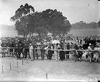 Picture relating to Acton - titled 'Crowd of people at Highland Games, Acton Flats.'