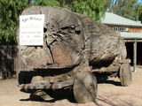 Picture relating to Echuca - titled 'Old Log Buggy'