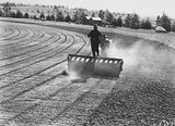 Picture relating to Manuka - titled 'Cletrac crawler tractor towing a roller preparing the ground for sowing Manuka Oval, Kingston.'