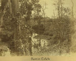 Picture relating to Mackay - titled 'Barrie Estate'