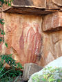 Picture relating to Katherine Gorge - titled 'Aboriginal Rock Art by the Jawoyn People'