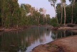 Picture of / about 'Douglas Hot Springs' the Northern Territory - Douglas Hot Springs
