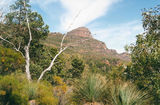 Picture relating to St Mary Peak - titled 'St Mary Peak'