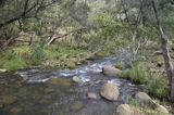 Picture relating to Mount Barney National Park - titled 'Mount Barney Creek'