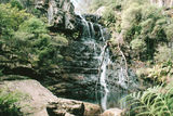 Picture relating to Kanangra-Boyd National Park - titled 'Kanangra-Boyd National Park'