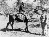 Picture of / about 'Miriam Vale' Queensland - At the Miriam Vale Racecourse, 1898
