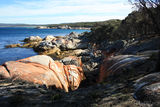 Picture relating to Bay Of Fires - titled 'Bay Of Fires'