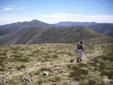 Picture of / about 'Mount Feathertop' Victoria - Mount Feathertop