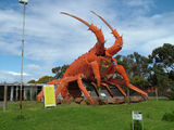 Picture relating to Kingston S.E. - titled 'The Big Lobster'