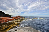 Bay Of Fires, headland at Cosy Corner