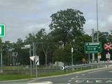 Picture relating to Beerburrum Road - titled 'Beerburrum Road'