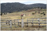 Picture relating to Namadgi National Park - titled 'Namadgi National Park - Orroral Valley Homestead'