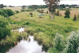 Picture relating to Eumeralla River - titled 'Eumeralla River, Macarthur, picnic ground'