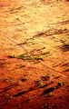 Picture of / about 'Stuart Highway' the Northern Territory and South Australia - The Road Home