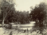 Picture relating to Bowen - titled 'Longford Creek, between Proserpine and Bowen, 1921'