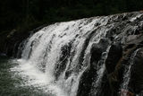 Picture relating to Malanda - titled 'Malanda Falls'