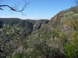 Picture relating to Jerrara Lookout - titled 'Jerrara Lookout looking north east'