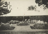 Picture relating to Boonah - titled 'Approach to the homestead through the garden at Coochin Coochin'
