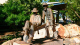 Picture relating to Halls Creek - titled 'Halls Creek'