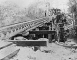 Picture relating to Burrum River - titled 'Burrum River railway bridge undergoing construction, 1884'