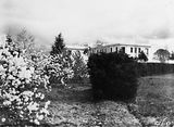 Picture relating to Parkes - titled 'Gardens near West Block, Queen Vicroria Terrace, Parkes.'