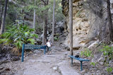 Picture relating to Carnarvon Gorge - titled 'Carnarvon Gorge - start of the climb to Boolimba'