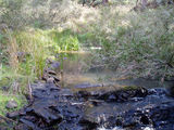 Picture of / about 'Kangaroo Creek' Victoria - Kangaroo Creek, Glenlyon