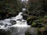 Picture relating to Keppel Falls - titled 'Keppel Falls'