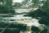 Picture relating to Pingerup State Forest - titled 'Pingerup State Forest'