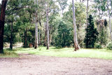 Picture relating to Flourbag Creek - titled 'Flourbag Creek Camp Ground'