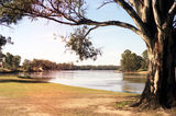 Picture of / about 'Mildura' Victoria and New South Wales - Murray River at Mildura.