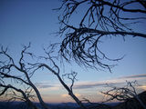 Picture relating to Mount Feathertop - titled 'Mount Feathertop'