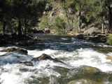 Picture of / about 'Goodradigbee River' New South Wales - Goodradigbee River