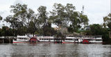 Picture relating to Mildura - titled 'Paddle boat Mildura'