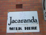 Picture relating to Boonah - titled 'Jacaranda Milk sign'